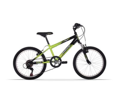 Extreme Viper 20 by Raleigh (2016)