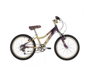Raleigh Chic 20