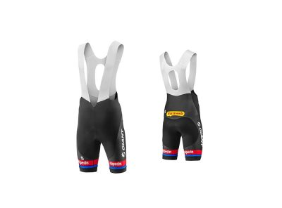 Giant Alpesin Bib Short