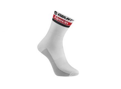 2016 Team Giant-Alpecin Special Edition Socks